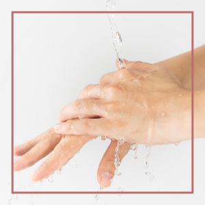 Hygiene & Desinfektion